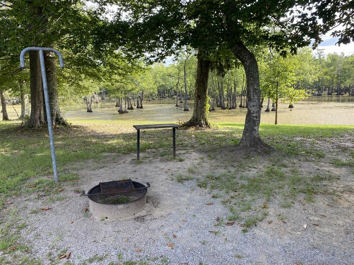 A photo of Site 24 of Loop MAGNOLIA RIDGE  at MAGNOLIA RIDGE with Fire Pit, Waterfront, Lantern Pole