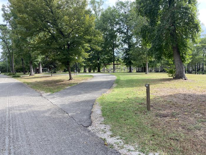 A photo of Site 34 of Loop MAGNOLIA RIDGE  at MAGNOLIA RIDGE with Picnic Table, Electricity Hookup, Fire Pit, Waterfront, Lantern Pole, Water Hookup