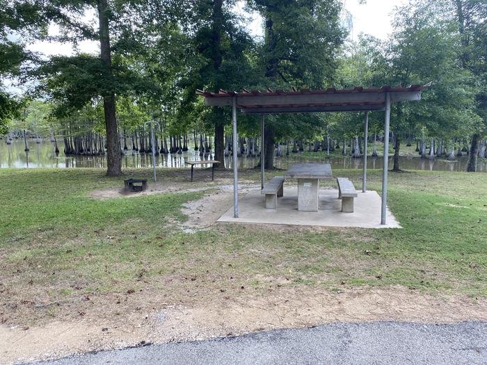 A photo of Site 34 of Loop MAGNOLIA RIDGE  at MAGNOLIA RIDGE with Picnic Table, Fire Pit, Waterfront, Lantern Pole
