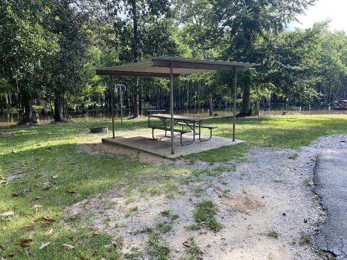 A photo of Site 21 of Loop MAGNOLIA RIDGE  at MAGNOLIA RIDGE with Picnic Table, Fire Pit, Waterfront, Lantern Pole
