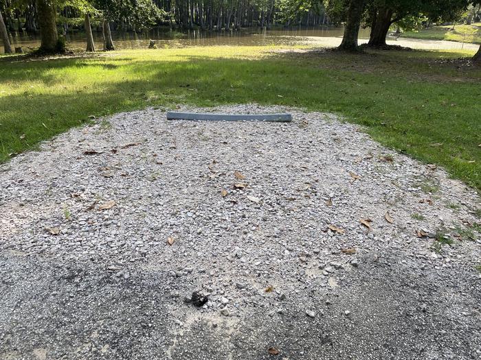 A photo of Site 21 of Loop MAGNOLIA RIDGE  at MAGNOLIA RIDGE with No Amenities Shown