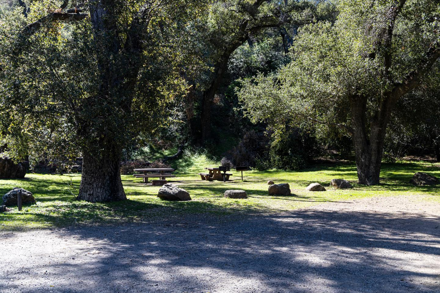 A photo of Site 005 of Loop AREA PARADISE at PARADISE CAMPGROUND with Picnic Table