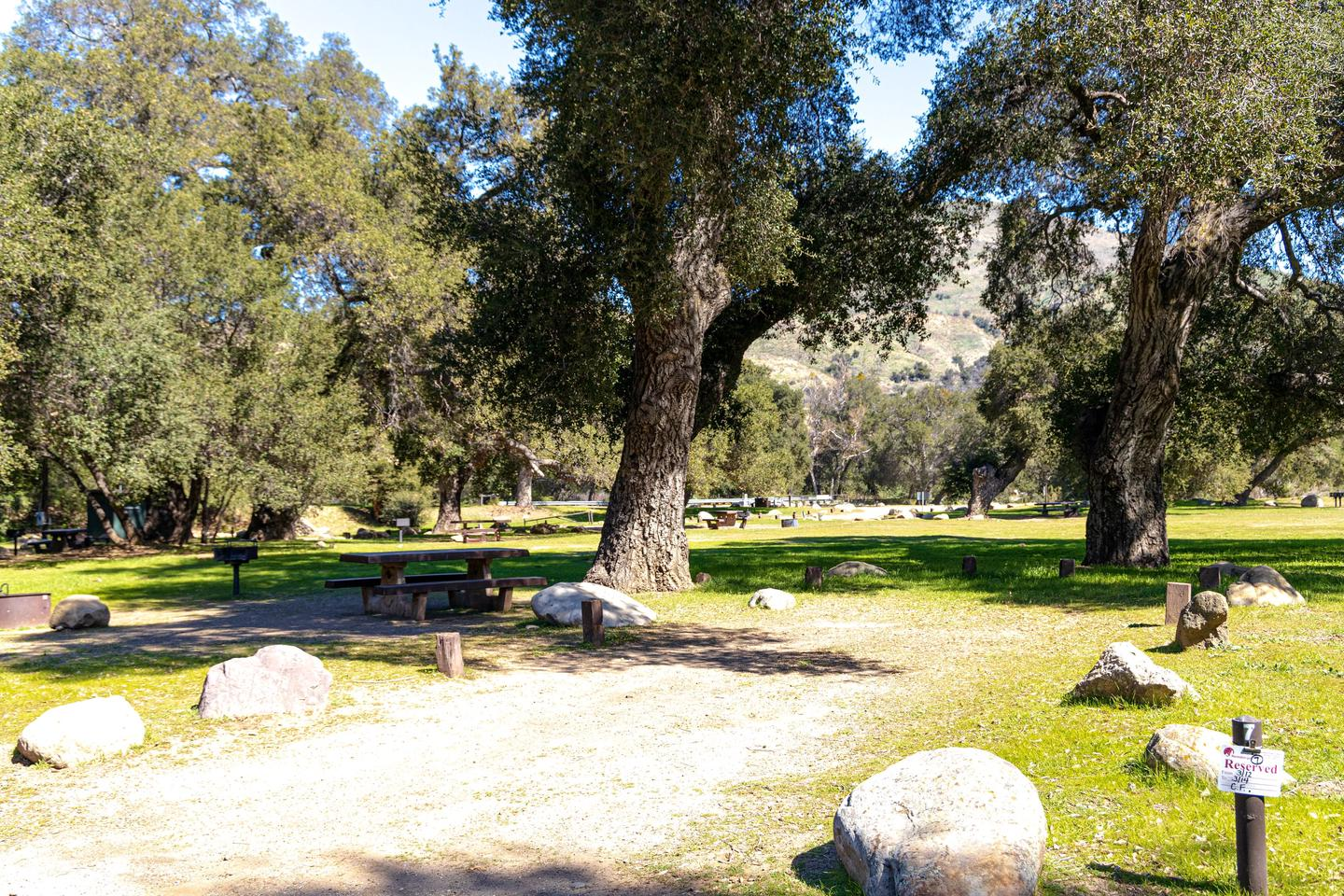 A photo of Site 007 of Loop AREA PARADISE at PARADISE CAMPGROUND with Picnic Table