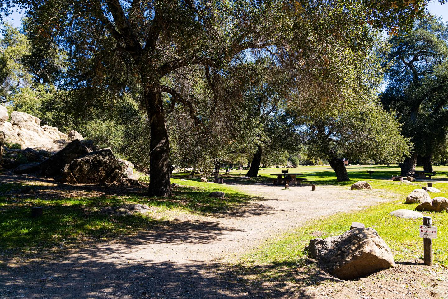 A photo of Site 010 of Loop AREA PARADISE at PARADISE CAMPGROUND with Picnic Table