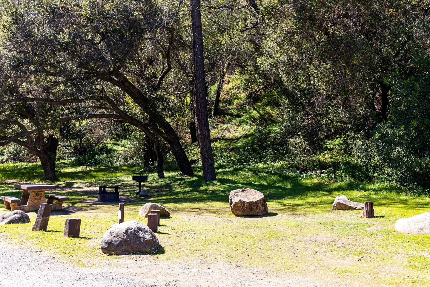 A photo of Site 011 of Loop AREA PARADISE at PARADISE CAMPGROUND with Picnic Table