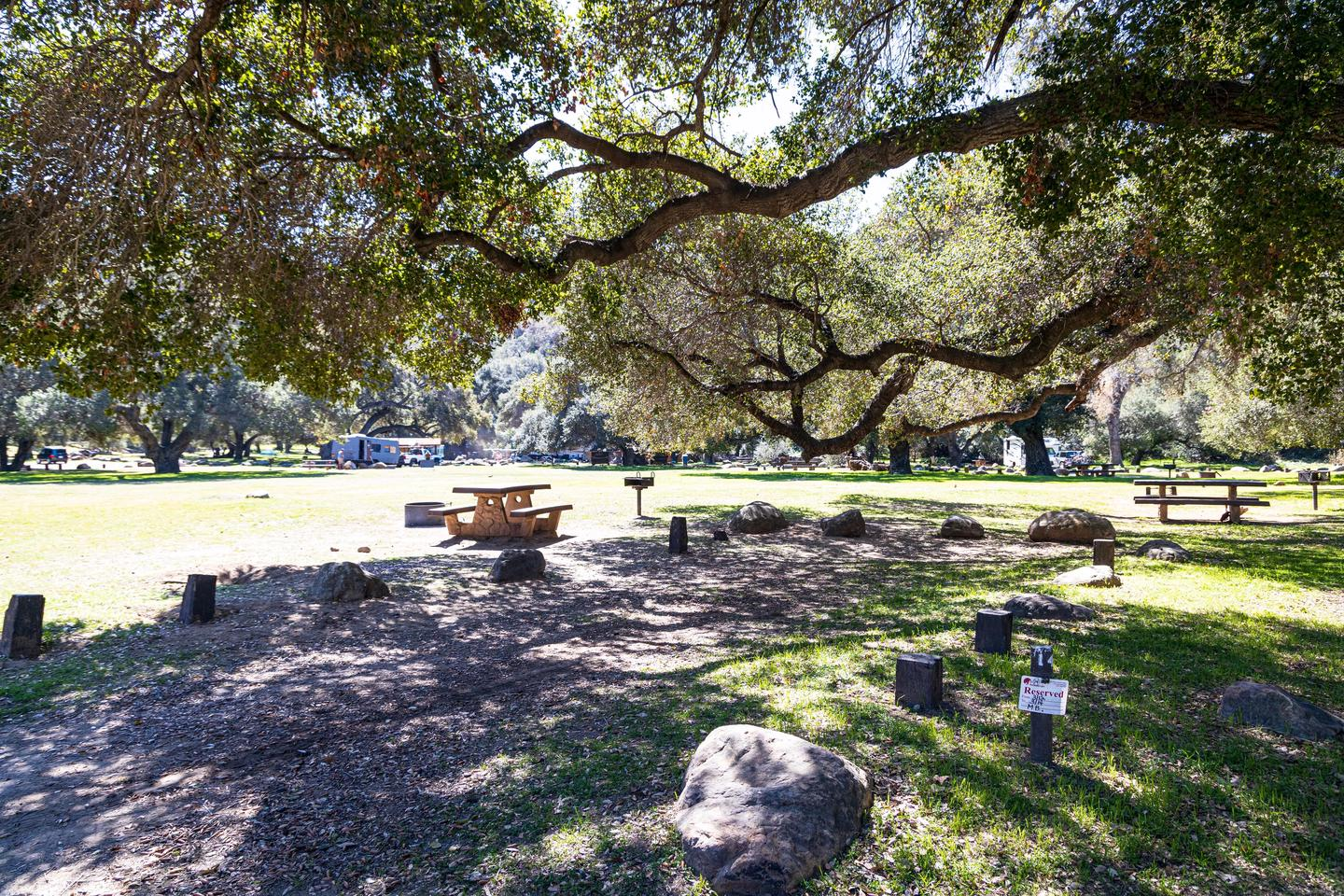 A photo of Site 014 of Loop AREA PARADISE at PARADISE CAMPGROUND with Picnic Table