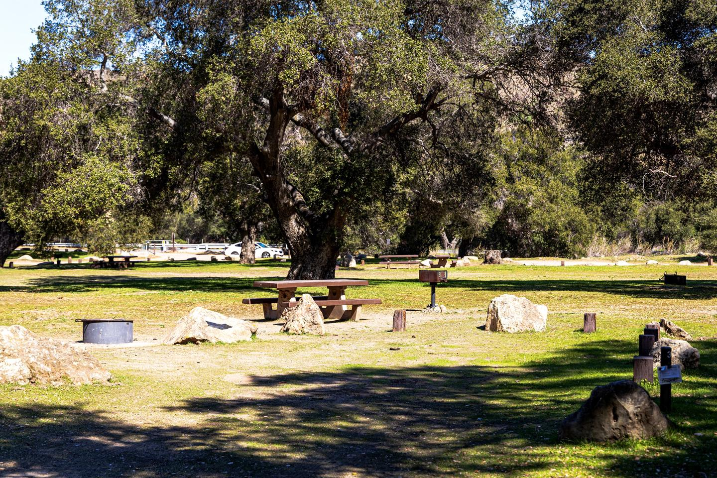A photo of Site 003 of Loop AREA PARADISE at PARADISE CAMPGROUND with Picnic Table
