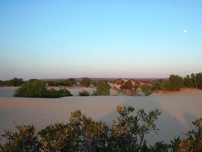 Preview photo of Mescalero Sands Ohv Area