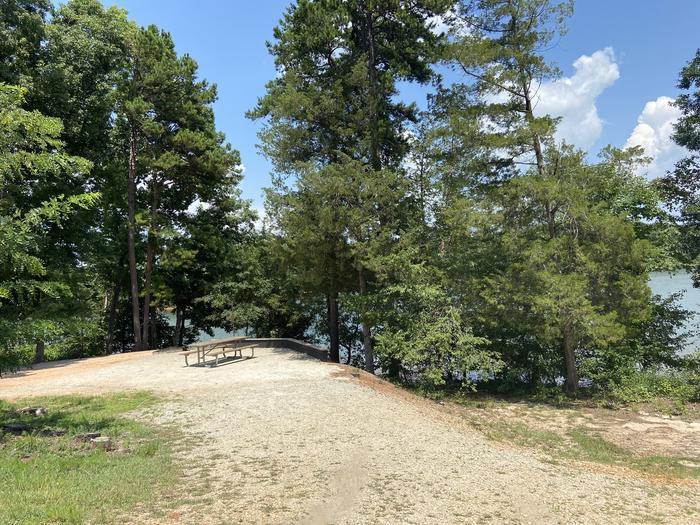 A photo of Site 59 of Loop SPRINGFIELD  at SPRINGFIELD with Picnic Table, Electricity Hookup, Fire Pit, Shade, Tent Pad, Waterfront, Lantern Pole, Water Hookup
