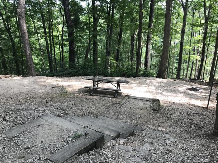 A photo of Site 047 of Loop SPNT at HARDIN RIDGE with Picnic Table, Fire Pit, Tent Pad, Lantern Pole