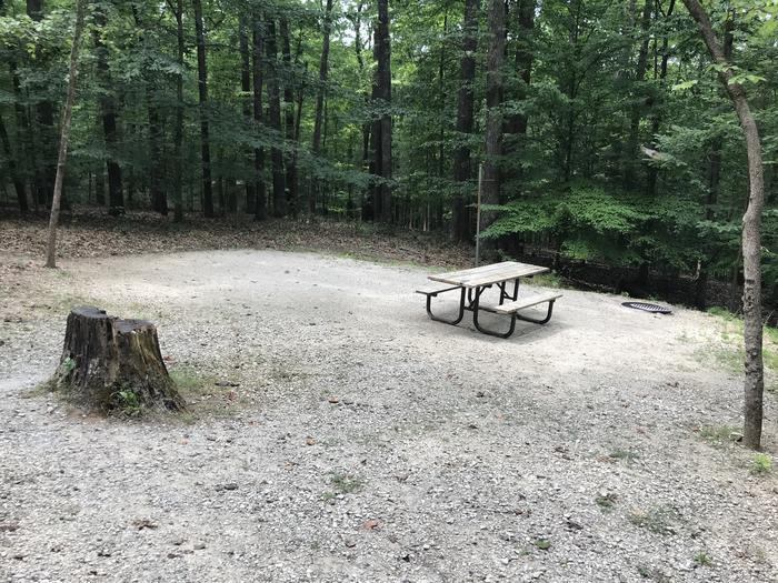 Just a step down to the tent pad picnic area firing and lantern pole our friendly little tree stump is there in the picture watch that as you're backing in