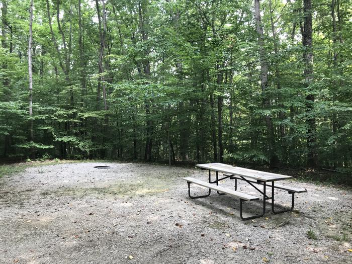 A nice sitting area for your tent pad lantern pole fire ring and picnic table
