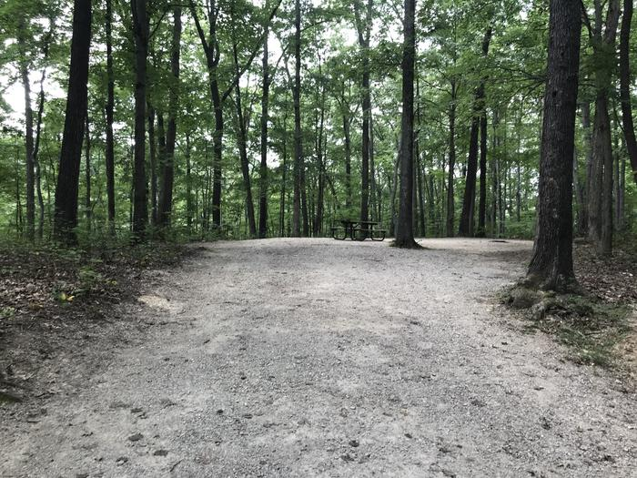 A photo of Site 119 of Loop BLGL at HARDIN RIDGE with Picnic Table, Electricity Hookup, Fire Pit, Shade, Tent Pad, Lantern Pole