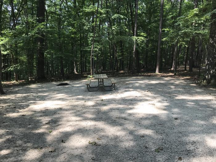A photo of Site 186 of Loop PINE at HARDIN RIDGE with Picnic Table, Electricity Hookup, Fire Pit, Shade, Tent Pad, Lantern Pole, Water Hookup