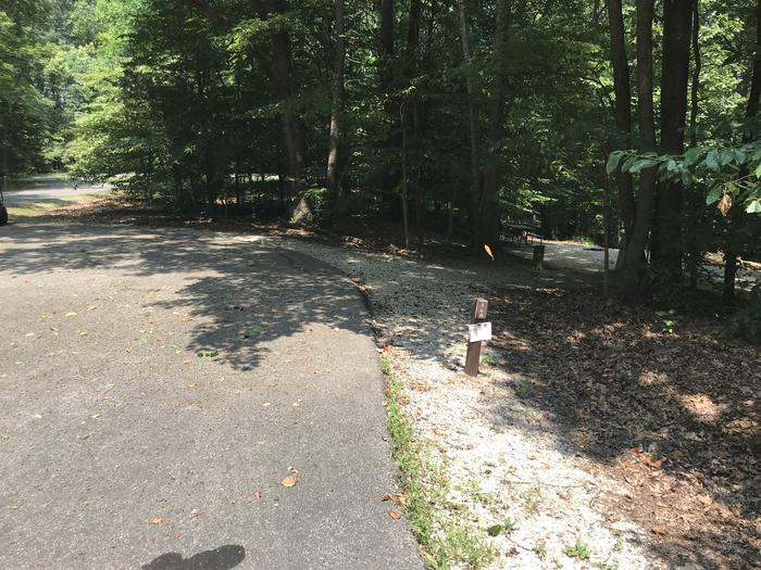 A photo of Site 168 of Loop PINE at HARDIN RIDGE with Picnic Table, Electricity Hookup, Fire Pit, Shade, Tent Pad, Lantern Pole