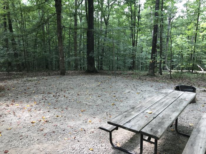 A photo of Site 146 of Loop WOAK at HARDIN RIDGE with Picnic Table, Electricity Hookup, Fire Pit, Shade, Tent Pad, Lantern Pole
