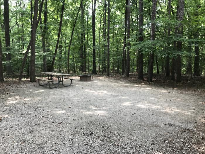 A photo of Site 189 of Loop PINE at HARDIN RIDGE with Picnic Table, Electricity Hookup, Fire Pit, Shade, Tent Pad, Lantern Pole