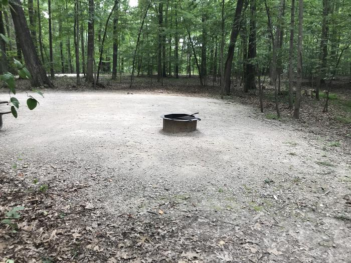 A photo of Site 133 of Loop BLGL at HARDIN RIDGE with Picnic Table, Electricity Hookup, Fire Pit, Shade, Tent Pad, Lantern Pole