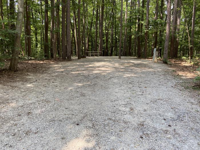 A photo of Site 184 of Loop PINE at HARDIN RIDGE with Picnic Table, Electricity Hookup, Fire Pit, Shade, Tent Pad, Lantern Pole, Water HookupA photo of Site 184 of Loop PINE at HARDIN RIDGE with Picnic Table, Electricity Hookup, Fire Pit, Shade, Tent Pad, Lantern Pole, Water Hookup no B in