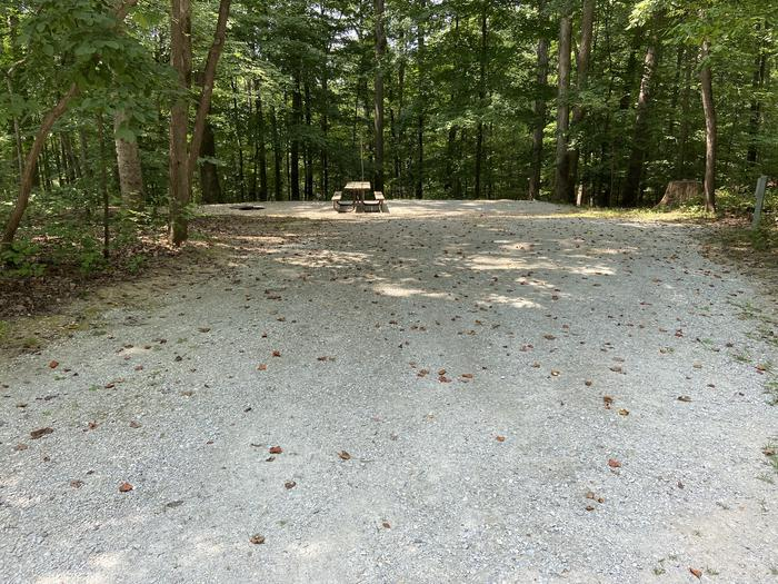 A photo of Site 145 of Loop WOAK at HARDIN RIDGE with Picnic Table, Electricity Hookup, Fire Pit, Shade, Tent Pad, Lantern Pole