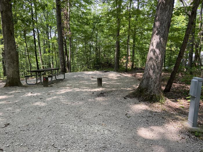 A photo of Site 118 of Loop BLGL at HARDIN RIDGE with Picnic Table, Electricity Hookup, Fire Pit, Shade, Tent Pad, Lantern Pole