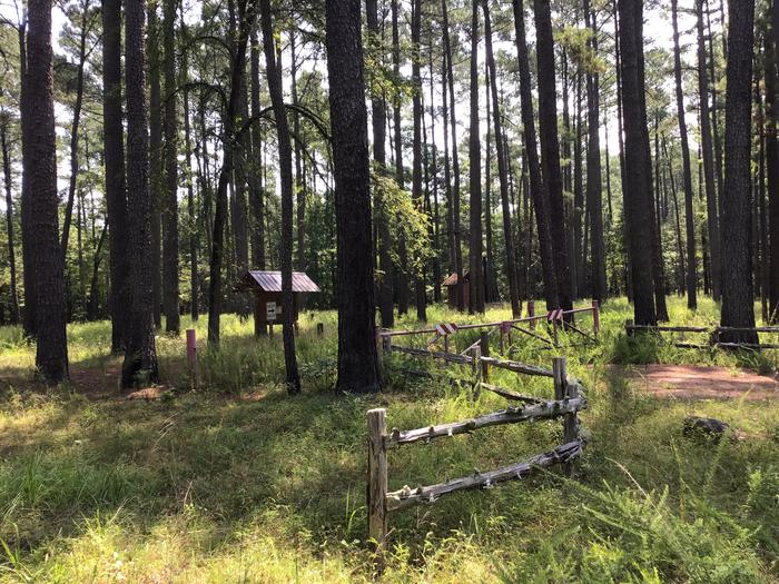 A photo of Site Poulous Group Campground of Loop Poulous at Poulous Loop Group Campground with Shade