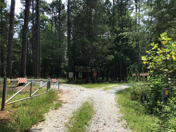 A photo of facility Collins Creek Seasonal Campground, SC A photo of facility Collins Creek Seasonal Campground, SC entrance road leading into campground.