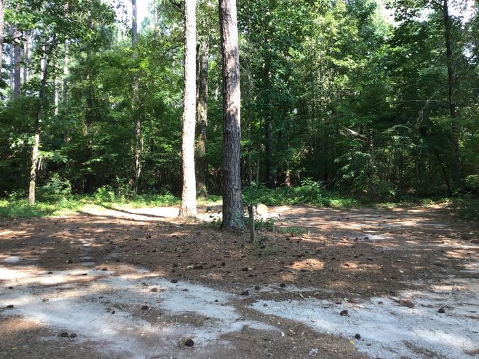 A photo of Site Site 05 of Loop Year round at Sedalia Campground (SC) with Fire Pit, Shade