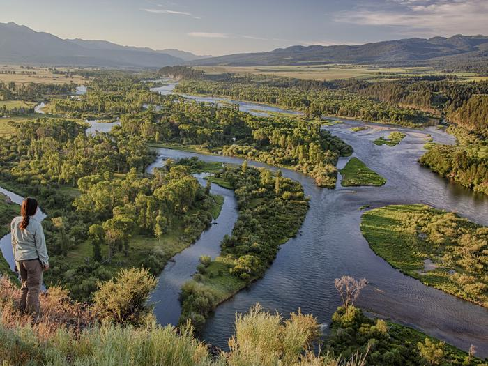 Preview photo of South Fork of the Snake River - Spring Creek