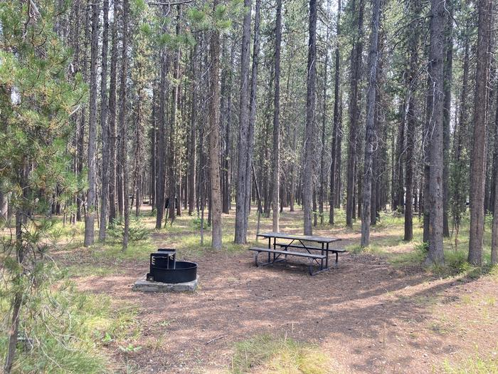 A photo of Site 12 of Loop Group at Colter Bay Campground with Picnic Table, Fire Pit, Food Storage