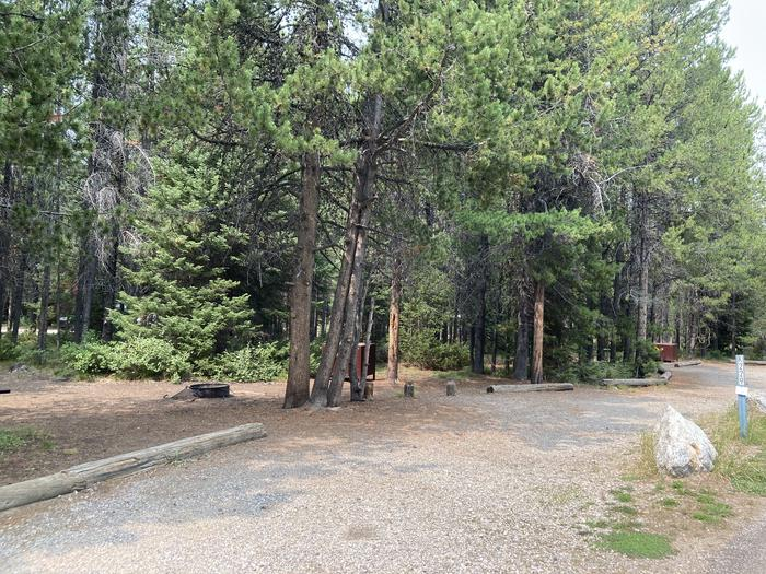 A photo of Site 229 of Loop K at Colter Bay Campground with Picnic Table, Fire Pit, Food Storage