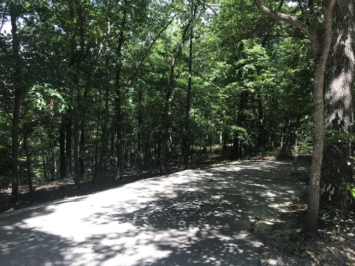 A photo of Site 172 of Loop PINE at HARDIN RIDGE with Picnic Table, Electricity Hookup, Fire Pit, Shade, Tent Pad, Lantern Pole