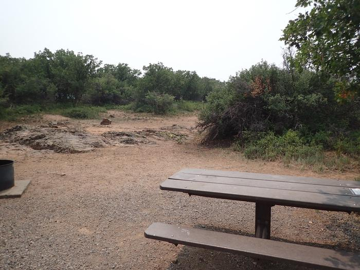 View within Campsite A-003