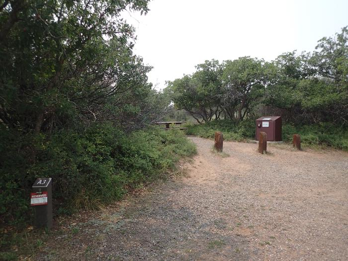 Drive-up view of Campsite A-003