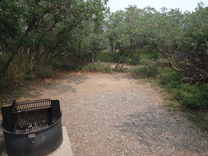 View of location where a tent is commonly placed within Campsite A-004