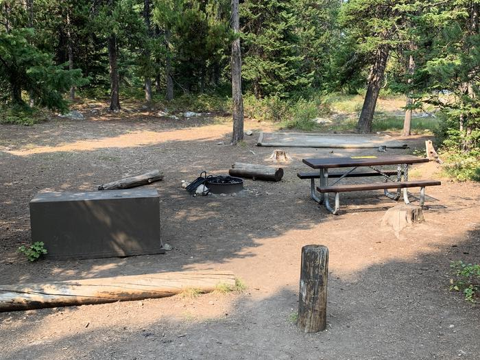 A photo of Site 12 of Loop Jenny Lake at Jenny Lake Campground with Picnic Table, Fire Pit, Food Storage, Tent Pad