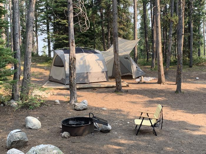 A photo of Site 23 of Loop Jenny Lake at Jenny Lake Campground with Picnic Table, Fire Pit, Food Storage, Tent Pad