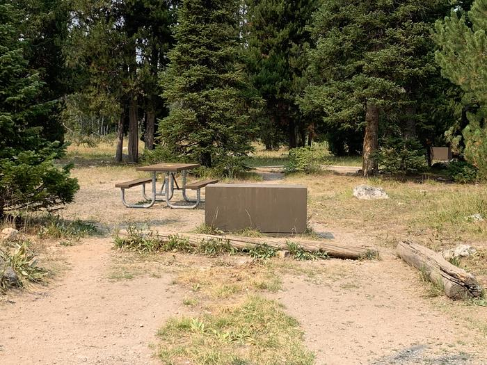 A photo of Site 2 of Loop Jenny Lake at Jenny Lake Campground with Picnic Table, Fire Pit, Food Storage, Tent Pad