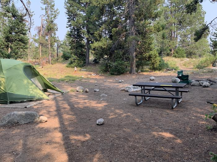 A photo of Site 25a of Loop Jenny Lake at Jenny Lake Campground with Picnic Table, Fire Pit, Food Storage, Tent Pad