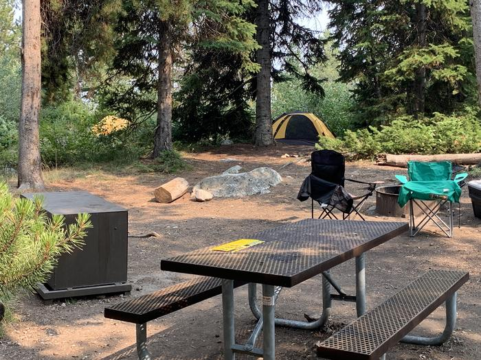 A photo of Site 27 of Loop Jenny Lake at Jenny Lake Campground with Picnic Table, Fire Pit, Food Storage, Tent Pad