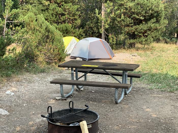 A photo of Site 38 of Loop Jenny Lake at Jenny Lake Campground with Picnic Table, Fire Pit, Food Storage, Tent Pad