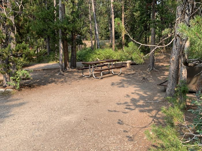 A photo of Site 19 of Loop Jenny Lake at Jenny Lake Campground with Picnic Table, Fire Pit, Food Storage, Tent Pad