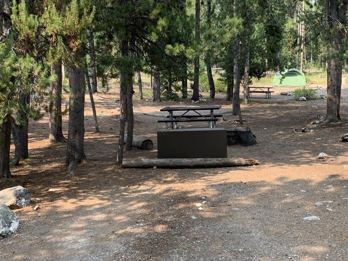 A photo of Site 21 of Loop Jenny Lake at Jenny Lake Campground with Picnic Table, Fire Pit, Food Storage, Tent Pad