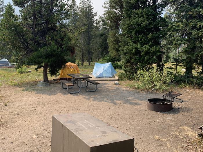 A photo of Site 8 of Loop Jenny Lake at Jenny Lake Campground with Picnic Table, Fire Pit, Food Storage, Tent Pad