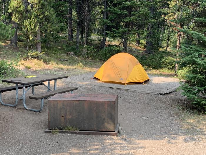 A photo of Site 33 of Loop Jenny Lake at Jenny Lake Campground with Picnic Table, Fire Pit, Food Storage, Tent Pad