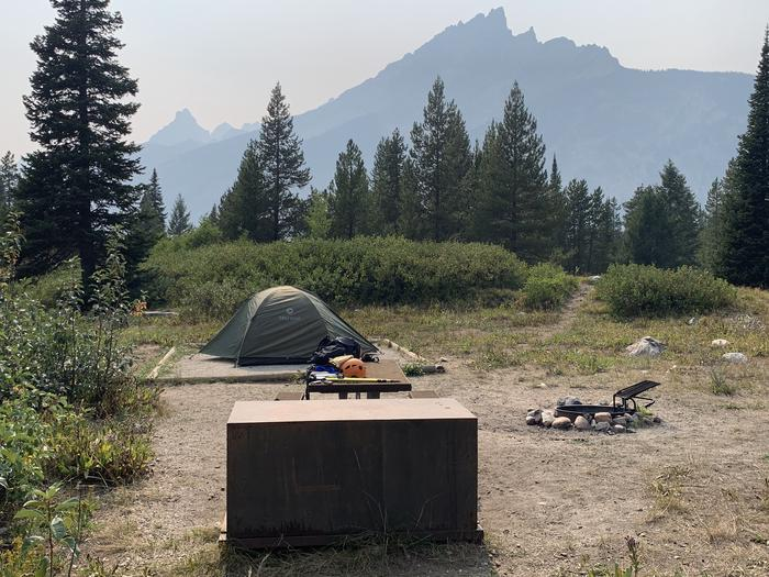 A photo of Site 46 of Loop Jenny Lake at Jenny Lake Campground with Picnic Table, Fire Pit, Food Storage, Tent Pad