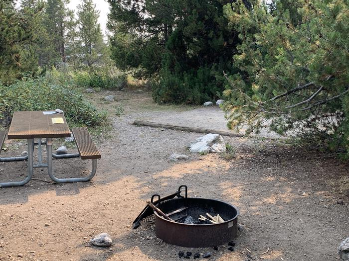 A photo of Site 39 of Loop Jenny Lake at Jenny Lake Campground with Picnic Table, Fire Pit, Food Storage, Tent Pad