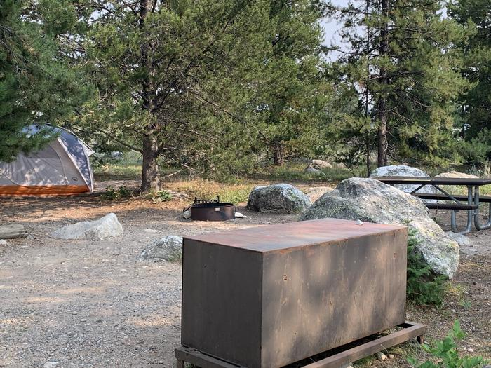 A photo of Site 44 of Loop Jenny Lake at Jenny Lake Campground with Picnic Table, Fire Pit, Food Storage, Tent Pad