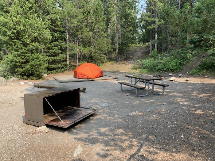 A photo of Site 17 of Loop Jenny Lake at Jenny Lake Campground with Picnic Table, Fire Pit, Food Storage, Tent Pad