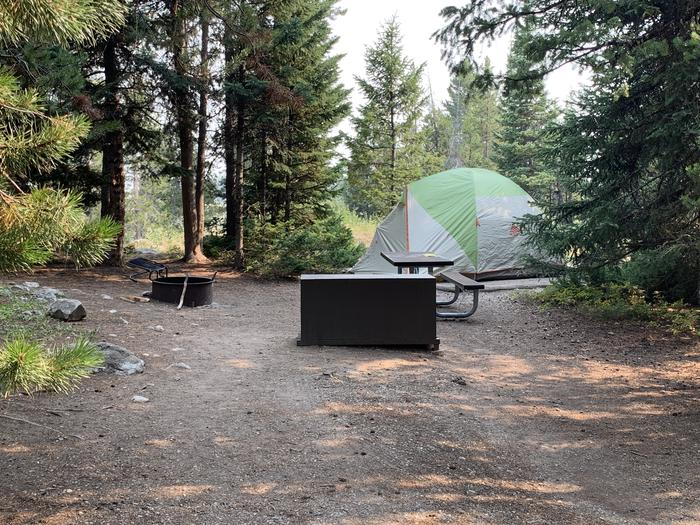 A photo of Site 34 of Loop Jenny Lake at Jenny Lake Campground with Picnic Table, Fire Pit, Food Storage, Tent Pad